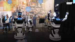 Ding Dong! Customer service and delivery robots displayed at Las Vegas Consumer Electronics Show [Video]