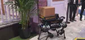 Robot delivery dog unveiled at CES [Video]