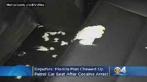 Florida Man Chews Up Police Car Seat After Cocaine Arrest [Video]