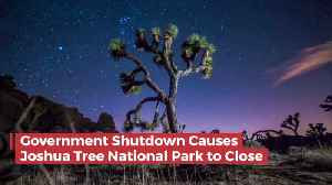 News video: Joshua Tree National Park Closes
