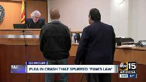 Driver pleads guilty in fatal crash that spurred 'Pam's Law' [Video]