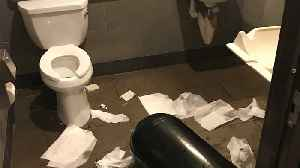 Starbucks Installing Needle Disposal Boxes in Some Bathrooms [Video]