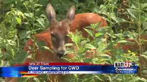 Deer sampling for CWD [Video]