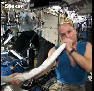 An Astronaut Made a Didgeridoo With a Space Station Vacuum Hose [Video]