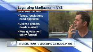 Push to legalize marijuana picks up steam in Albany [Video]