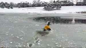 Dog rescued from icy pond in Colorado [Video]