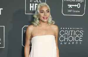 Lady Gaga praises Bradley Cooper [Video]