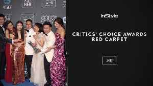The Looks You Can't Miss from the 2019 Critics' Choice Awards Red Carpet [Video]