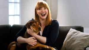 'A Dog's Way Home': Featurette - Finding Bella [Video]