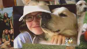 Teen's Service Dog Shot And Killed Outside North Texas Home [Video]