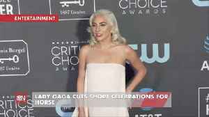 News video: Lady Gaga Leaves Award Show To Be With Her Beloved Dying Horse