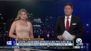 New Florida bill would ban abortions after heartbeat is detectable [Video]