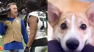 PHYSCO Eagles Fan Throws Dog In MICROWAVE After Loss To The The Saints! [Video]