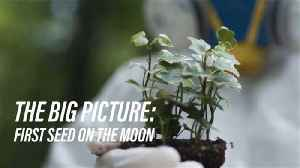 Soon, astronauts might be able to harvest food on the moon [Video]