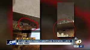 Mira Mesa student finds rodent droppings in school lunch [Video]