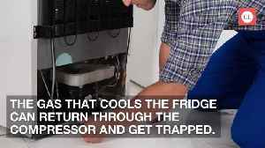 Yes, Your Refrigerator Can Actually Explode—Here's What You Need to Know [Video]