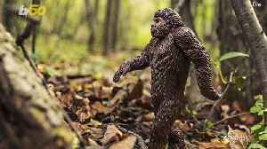 No, This Statue with Glowing Eyes Is Not Actually Bigfoot [Video]