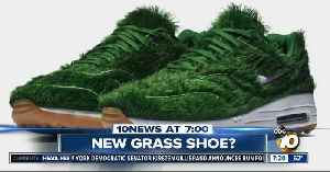 New shoe made out of grass? [Video]