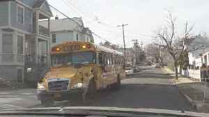 What You Need to Know About School Bus Surfers [Video]