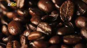 Alarming Percentage of the World's Wild Coffee Species at Risk of Extinction [Video]