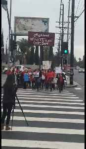 Los Angeles Teachers Dance Their Way Through Third Day of Strike [Video]