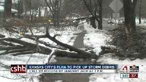 KCMO to implement service to pick up tree branches [Video]