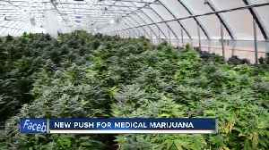 State leaders make a new push for medical marijuana [Video]