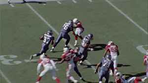Seattle Seahawks guard Steve Hutchinson highlights [Video]