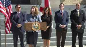 Attorney Wendy Link to replace Palm Beach County Supervisor of Elections Susan Bucher [Video]
