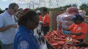 Food Distribution Set Up For Local Federal Employees By Non-Profit Feeding South Florida [Video]