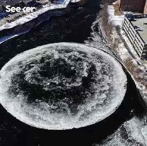 How Strange Ice Disks Form in Winter [Video]