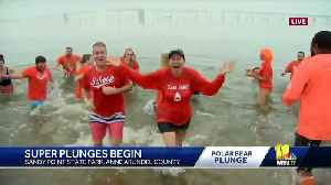 Jen Franciotti dunks into frigid Chesapeake Bay for Special Olympics [Video]