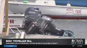 Bill Would Require Propeller Guards On Boats [Video]