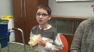 11-Year-Old Boy Has Cutting-Edge Surgery Thanks to 3D Model [Video]
