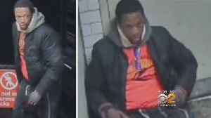 Police Seek Sexual Assault Subway Attack Suspect [Video]