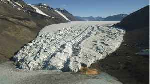 North America's Glaciers Are Melting Four Times Faster [Video]
