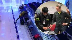 Serial Suitcase Thief Finally Caught [Video]