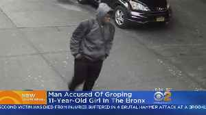 Police: Man Groped 11-Year-Old In The Bronx [Video]