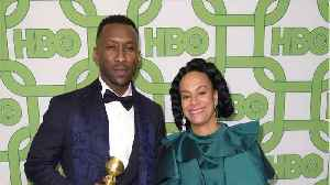 Green Book The Big Winner At The Producers Guild Awards [Video]