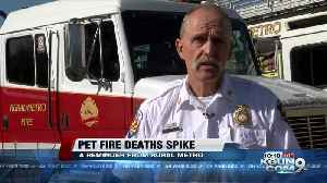 Rural Metro Fire seeing a spike in pets dying in home fires [Video]