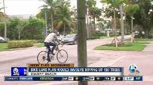 Delray Beach bike plan could involve cutting down 150 trees [Video]