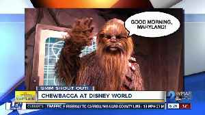 Good morning from Chewbacca at Disney World! [Video]
