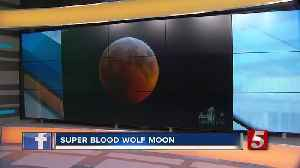 Did you see it? Super blood wolf moon captivates stargazers [Video]