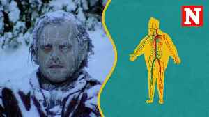 What Happens To Your Body When You're Cold [Video]