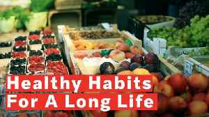 4 Healthy Habits For A Longer Life [Video]