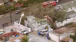 2 Killed After Massive Tree Falls on Southern California Home [Video]