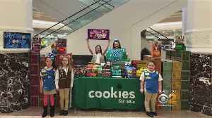 Girl Scouts Say Duo Stole Their Cookie Fundraising Money [Video]