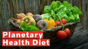 Scientists Reveal 'Ideal Diet' To Save People And The Planet [Video]