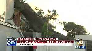 Two people dead after tree falls through home [Video]