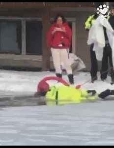 Video captures dramatic rescue of dog from icy pond [Video]